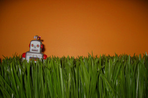 Robo Advice and what it means for financial planners